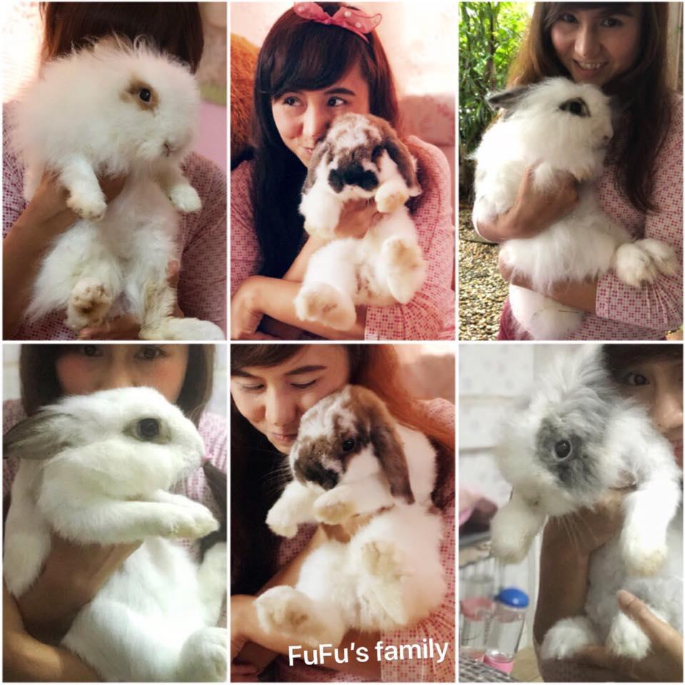 Jeabja Fufu ทาสกระต่าย ครอบครัวตัวฟู